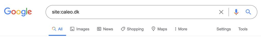 Sådan tjekker du hvilke sider dit website er indekseret på